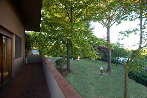Вид на парк с террасы