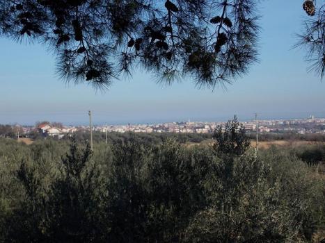 Панорамный вид на Пескару и Адриатическое море