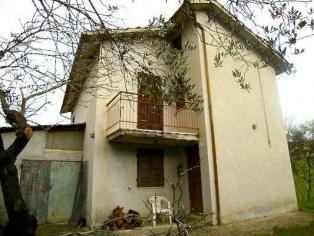 Дом с оливковым садом